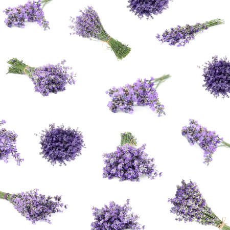 Set of beautiful tender lavender flowers on white background