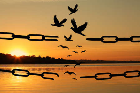 Freedom concept. Silhouettes of broken chain and birds flying outdoors at sunset