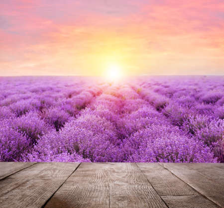 Empty wooden surface and beautiful blooming lavender field on summer day at sunset
