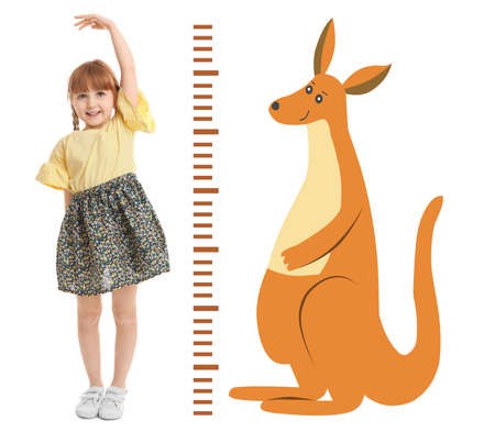 Little girl measuring height and drawing of kangaroo on white background