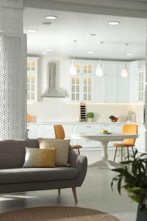 Stylish apartment interior with modern kitchen. Idea for design