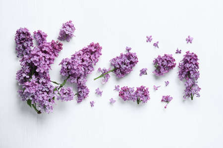 Beautiful lilac blossom on white wooden background, flat lay