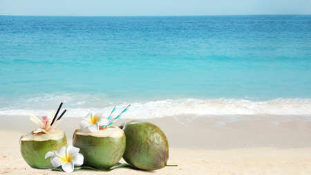 Green coconuts with refreshing drink and flowers on sandy beach near sea, space for text