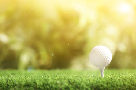 Golf ball with tee in park on sunny day. Space for design Standard-Bild