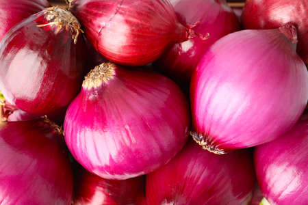 Many fresh red onions as background, closeup view