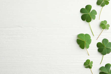 Clover leaves on white wooden table, flat lay with space for text. St. Patrick's Day symbol Фото со стока - 150188619