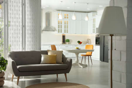Stylish apartment interior with modern kitchen. Idea for design Banque d'images