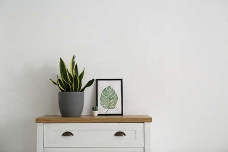 Chest of drawers and houseplant in stylish living room