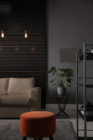 Stylish living room interior with elegant leather sofa 免版税图像
