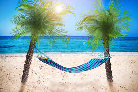 Hammock at sandy beach near sea on sunny day