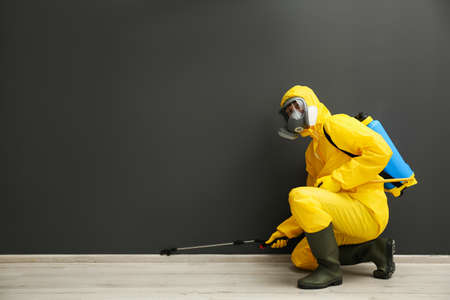 Pest control worker in protective suit spraying pesticide near black wall indoors. Space for text