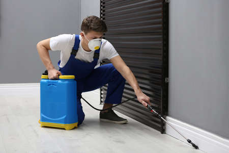 Pest control worker spraying pesticide in room