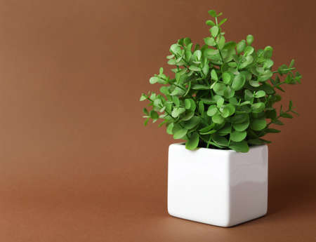 Beautiful artificial plant in flower pot on brown background, space for text
