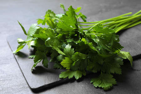 Bunch of fresh green parsley on gray table, closeup