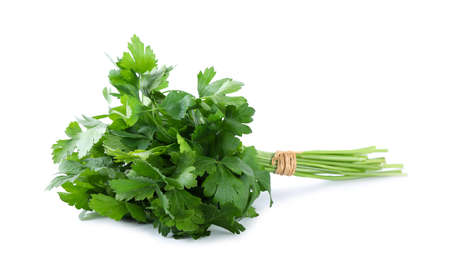Bunch of fresh green parsley isolated on white Imagens