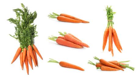 Set of fresh ripe carrots on white background. Banner design