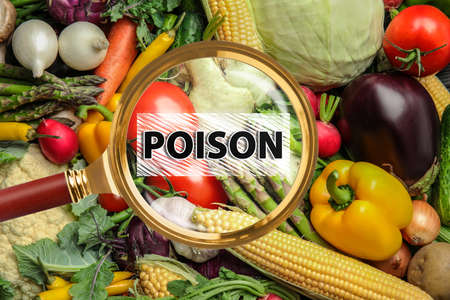 Magnifying glass on vegetables, top view. Food poisoning concept