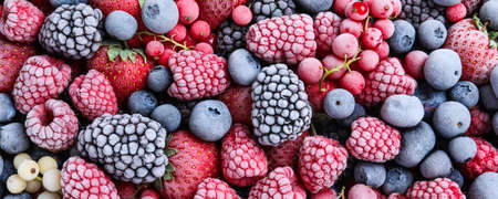 Mix of different frozen berries as background, banner design