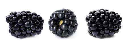 Three ripe blackberries isolated on white background, banner design