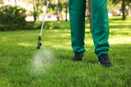 Worker spraying pesticide onto green lawn outdoors, closeup. Pest control Banque d'images