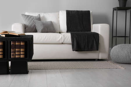 Modern comfortable sofa in stylish living room interior Reklamní fotografie