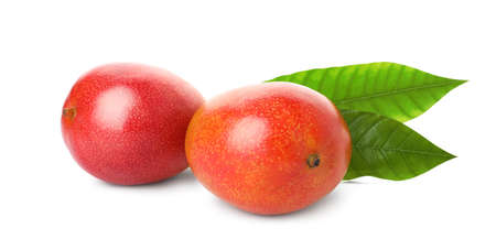 Fresh ripe mangoes with green leaves isolated on white. Exotic fruits