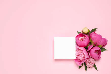 Beautiful peonies and blank card on pink background, flat lay. Space for text Stockfoto