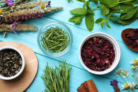 Flat lay composition with healing herbs on light blue wooden table Banque d'images