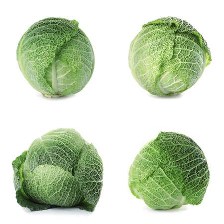 Set of fresh Savoy cabbages on white background Archivio Fotografico