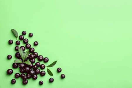 Fresh acai berries and leaves on green background, flat lay. Space for text
