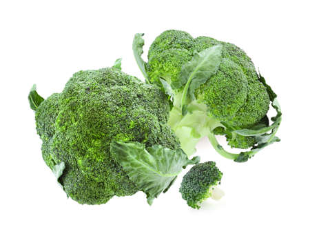 Fresh green broccoli on white background. Edible plant