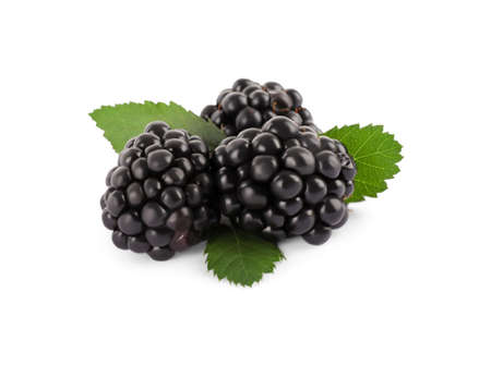 Tasty ripe blackberries and leaves on white background