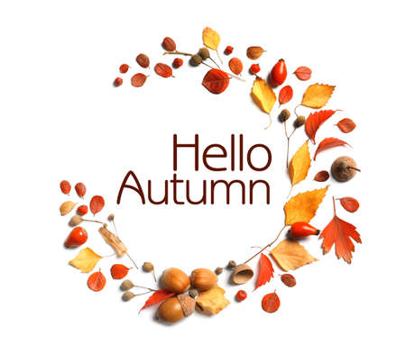 Hello Autumn card. Beautiful composition with autumn leaves and text on white background, top view