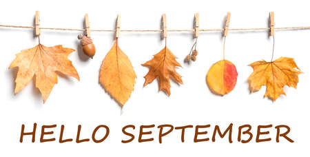 Hello September card. Rope with autumn leaves hanging on white wall