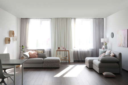 Elegant living room with comfortable sofas near windows. Interior design Reklamní fotografie
