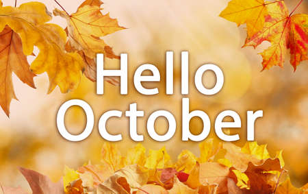 Text Hello October and golden autumn leaves on blurred background
