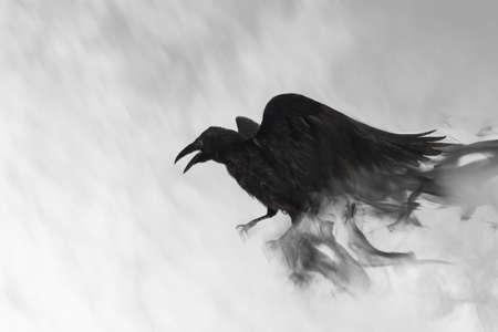 Black raven flying through mist, fantasy image