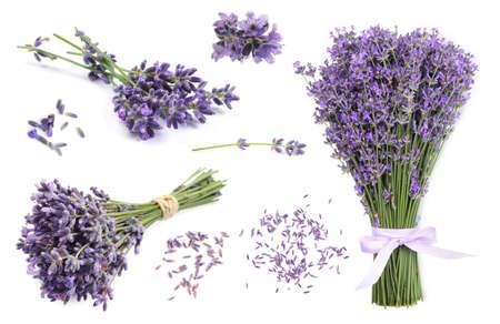 Set of lavender flowers on white background Stock Photo