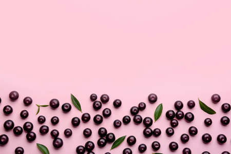 Fresh acai berries and green leaves on pink background, flat lay. Space for text