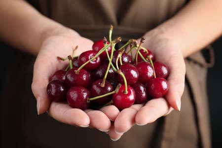 Woman holding sweet juicy cherries, closeup view