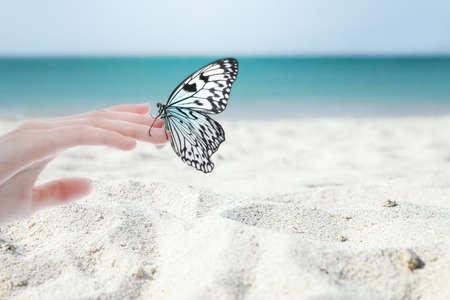 Woman holding beautiful rice paper butterfly on sandy beach, closeup Stock Photo