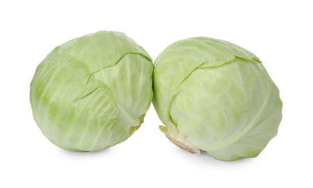 Whole fresh ripe cabbages isolated on white