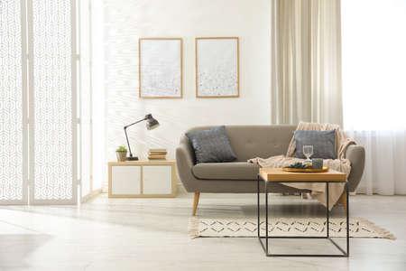 Modern living room interior with comfortable sofa Standard-Bild