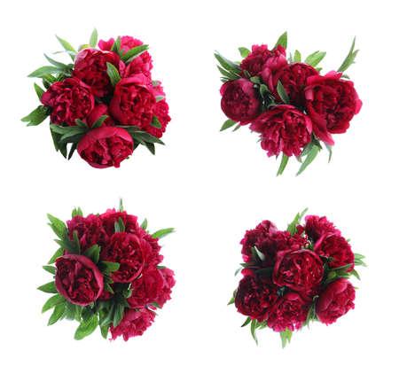 Set of beautiful peonies on white background. Bright bouquets Standard-Bild