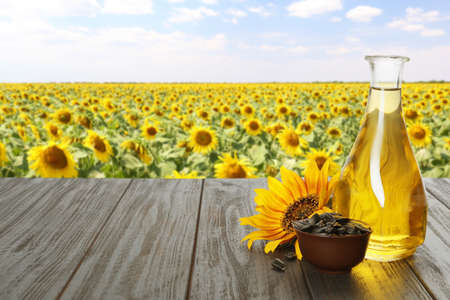 Sunflower oil and seeds on wooden table near blooming field. Space for text