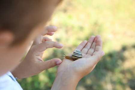 Boy playing with cute snail outdoors, closeup. Child spending time in nature