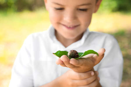 Boy playing with cute snail outdoors, focus on hand. Child spending time in nature