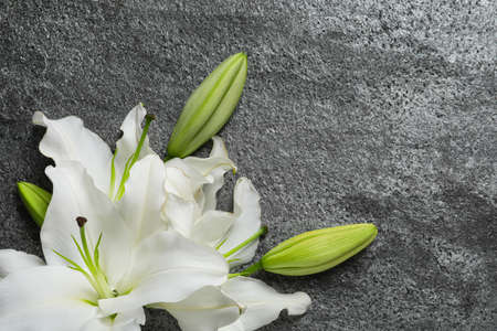 Beautiful lily flowers on gray stone background, top view. Space for text
