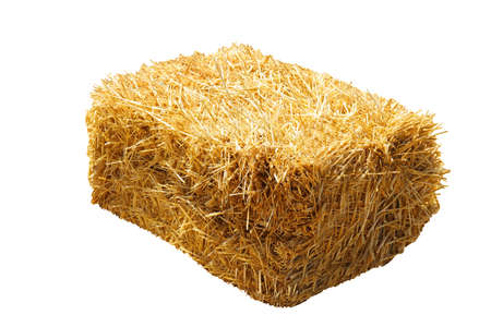 Dried hay bale isolated on white. Agriculture industry