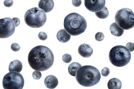 Fresh whole blueberries falling on white background Zdjęcie Seryjne
